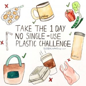 No single use plastic challenge