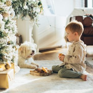 Dog and young boy sit by Christmas tree