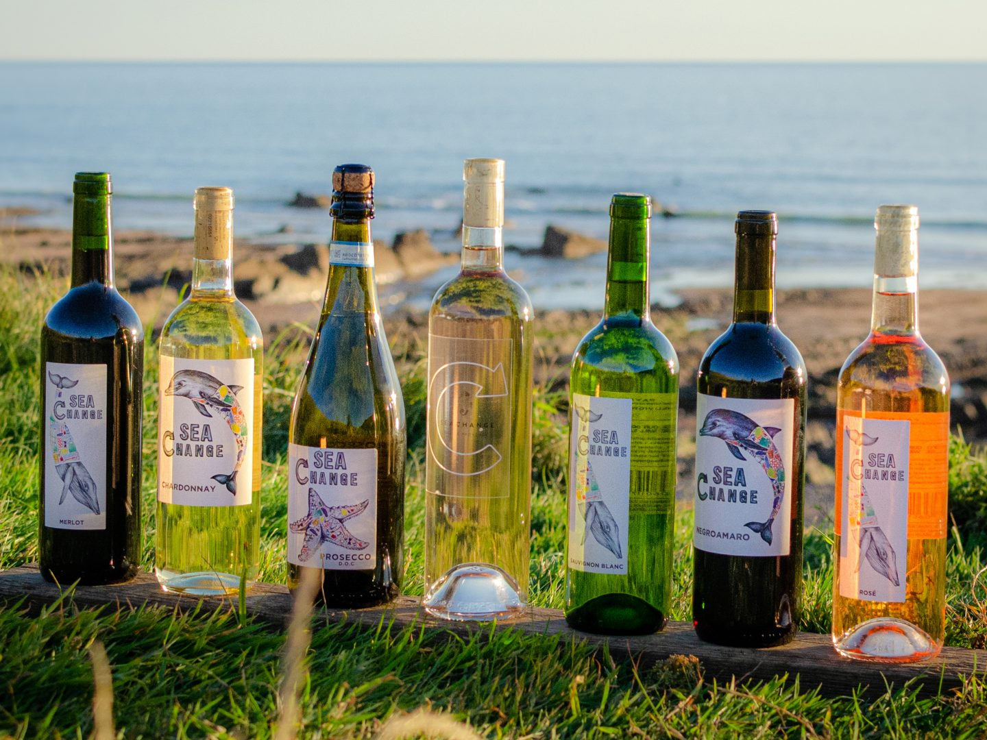 Sea Change Wine bottles lined up with sea in background