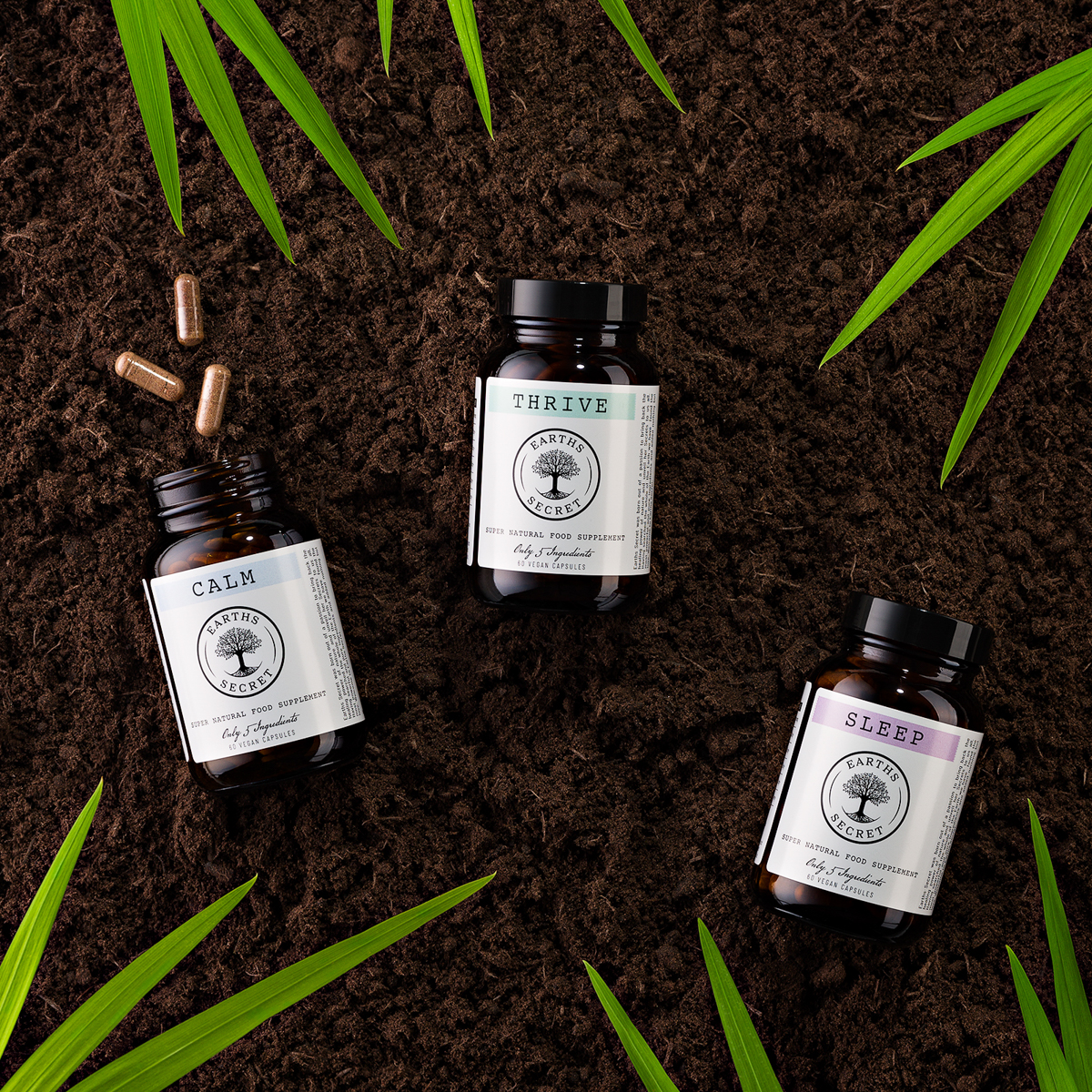 Earths Secret products laid in forest